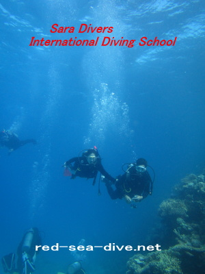 Try diving picture