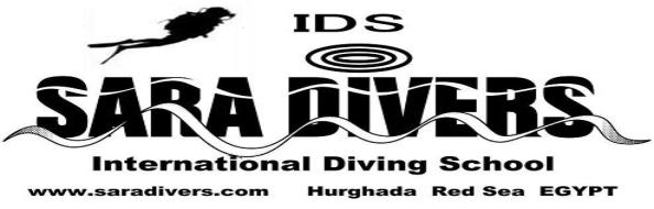 Red Sea Diving holiday in Egypt. Dive Hurghada with sara divers. the best dive in Red Sea egypt.